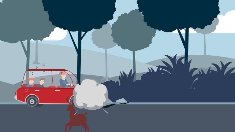 Animacje na potrzeby prezentacji typu pitch