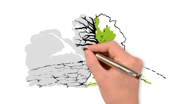 (Polski) Whiteboard – Zapobieganie suszy